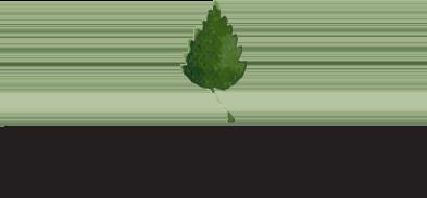Mill Springs Logo